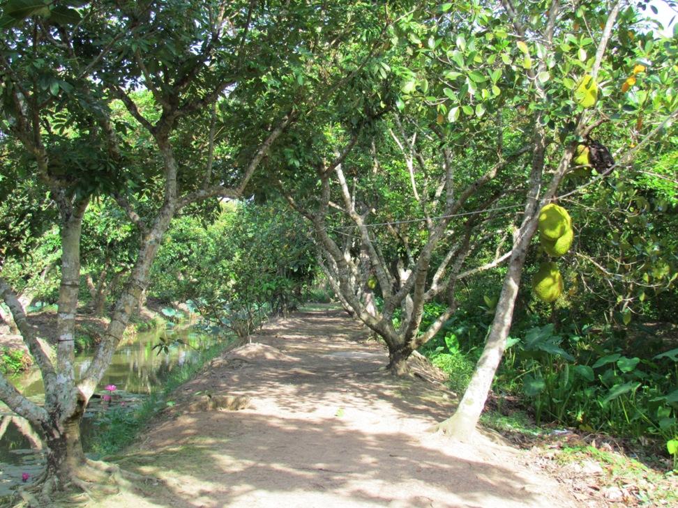 Khu du lịch sinh thái Thuận Tình (Hội An)