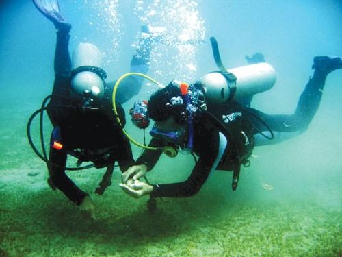 Lặn chìm ngắm san hô Cù Lao Chàm